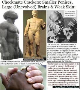 Checkmate Crackers: Smaller Penises, Large (Unevolved) Brains & Weak Skin: White Superioty's Flaws (w/ Charles Darwin, Louis Leakey, Charles S. Coon, Adolph Hilter) by Antioch Hades;