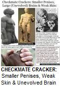 Checkmate Cracker: Smaller Penises, Weak Skin & Unevolved Brains