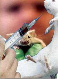 The Devil's Lab Rats
